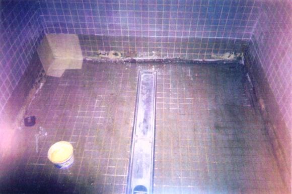 Repair image of Public Swimming Pool Area